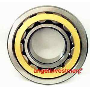 high temperature 1pc  Cylindrical Roller Bearing NU1005M 25×47×12mm