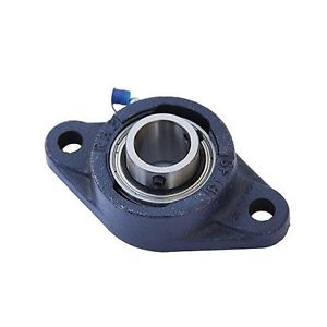 high temperature MSFT25 25mm Bore NSK RHP 2 Bolt Hole Flange Bearing