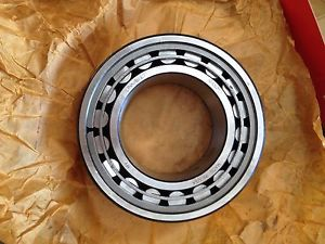 high temperature Link-Belt Bearing: MA5213TV