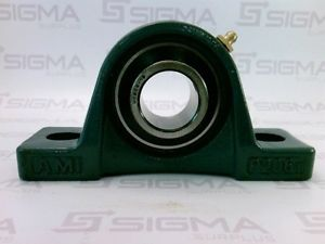 high temperature Asahi UC206-19 Bearing Insert w/AMI P206T Pillow Block Bearing Assembly