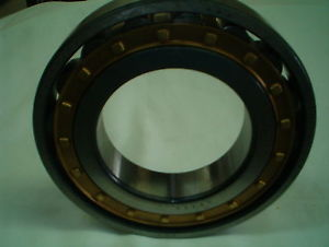 high temperature FAG N222E.M1.C3 bearing
